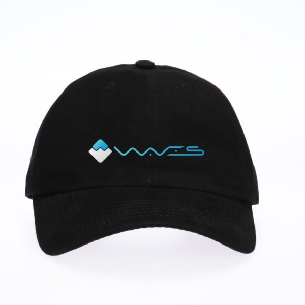 Waves Retro Cap
